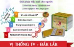 vi-thong-tv-dak-lak