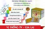 vi-thong-tv-gia-lai